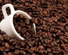Caffeine and Fertility