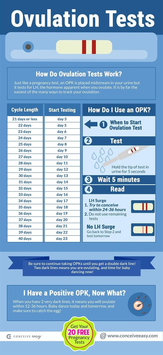 ovulation predictor test